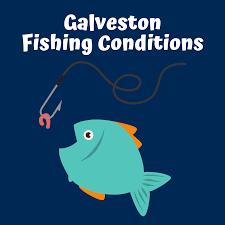 Galveston Fishing Sand N Sea Properties Things To Do