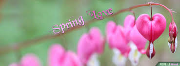 spring love cover for facebook