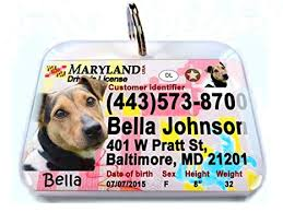 Maryland regular New Pet Amazon License Id4pet com 125