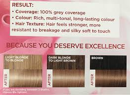 Loreal Ash Color Chart Loreal Excellence Creme In 8 1 Natural Ash Blonde