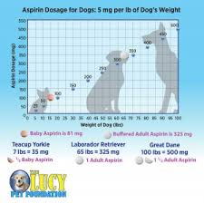Baby Aspirin For Dogs Dosage Chart Ktla Ask The Doc The Lucy Pet Foundation