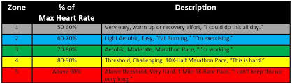 Heart Rate Activity Chart Data Driven Fitness Vo2 Max Lactate Threshold Heart Rate