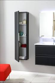 wall mounted cabinets. Wall Mounted Bathroom Cabinets Hung Regarding Mount Cabinet Ideas 4 T