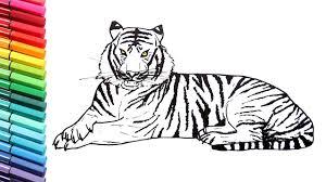 color tiger drawing. Interesting Tiger Drawing And Coloring A Tiger  How To Draw Wild Animals Color Pages For  Children To L