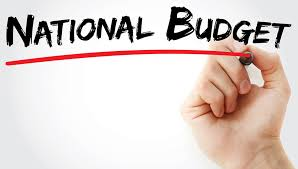Image result for national budget