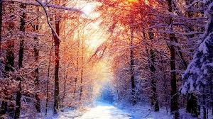 winter background images hd. Fine Winter Beautiful Winter Sunrise Wallpaper And Background Images Hd S