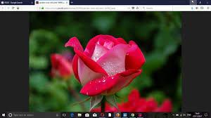 Laptop Mai Image Kese Download Kare ...