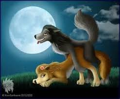 live love furries images kate and humphrey wallpaper and background photos