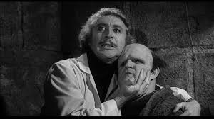 ten things you might not know about young frankenstein