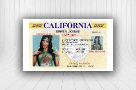 Wickybay Template s Id u California