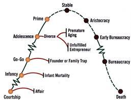 Organizational Life Cycle Chart