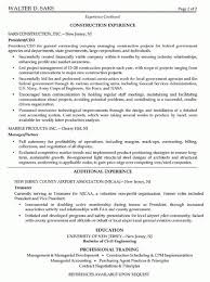 Construction Objective For Resume Ink Dance Essays on The Writing Life resume construction labor 34