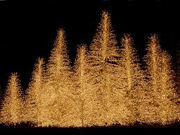 Desktop Christmas Lights Christmas Lights Wallpapers Hd Free 2018 Techbeasts