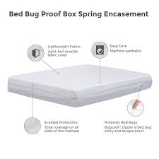 mattress and box spring. compare. basic bed bug proof box spring mattress and
