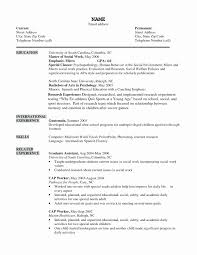 Esthetician Resume No Experience Resume Work Template