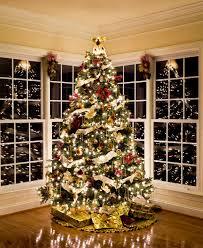 photo studio christmas background. Interesting Studio CH30  Christmas Window On Photo Studio Background