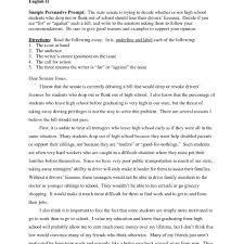 Example Of High School Essays Student Persuasive Essay Examples Demire Agdiffusion