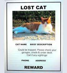 Missing Dog Poster Maker Pet Template 317216585046 Found Dog