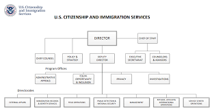 Dhs Cisa Org Chart 76 All Inclusive Dept Of Homeland Security Org Chart
