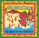 Best of Big Mountain [Bonus Tracks]