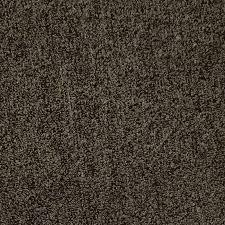 tan carpet floor. Carpet Tan Floor E