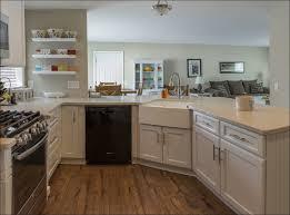 Large Size Of Kitchen Cabinets Glass Kitchen Cabinets Rta Cabinet Store  Modern Kitchen