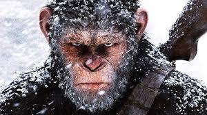 """Résultat de recherche d'images pour """"planete des singe suprématie"""""""