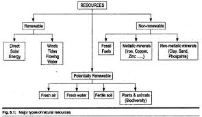 Biodiversity Classification Chart Classification Of Resources With Diagram Environment