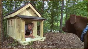 creative dog house plans for multiple dogs for brilliant decorating inspirational 49 with dog house plans