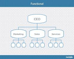 Collaborative Organizational Chart 9 Types Of Organizational Structure Every Company Should