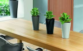 great office plants. The10 Best Office Plants Metropolitan Wholesale With Regard To Dimensions 1470 X 900 Great