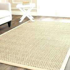 10 x 20 carpet outdoor rug casual natural fiber and beige border 8