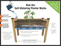 Charming ... Hilarious Apollo Plastics Self Watering Planter ...