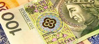 Валюта Польши курс валют в Польше к рублю и гривне обмен валют в  Валюта Польши прогнозы экспертов и анализ валютного рынка
