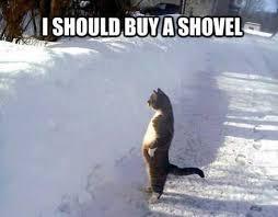 The 20 Funniest Snow Memes Ever   WorldWideInterweb via Relatably.com