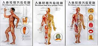 Acupuncture Chart Poster 3 Massage Poster Charts Meridians And Acupuncture Human Body Points Chart In Chinese Part English