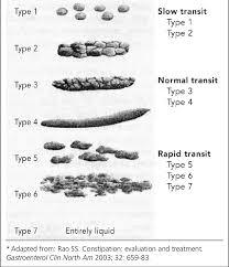 Bristol Stool Chart Download Scientific Diagram