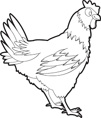 Free Printable Chicken Coloring Page For Kids Supplyme