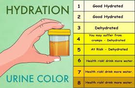 Medical Urine Color Chart Image Result For Urine Color Chart Color Of Urine Health