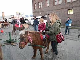 photo of langs pony farm rides at sedro woolley magic langs pony farm rides at sedro woolley magic of christmas event
