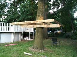 how to build a treehouse. 20110702-083147.jpg How To Build A Treehouse