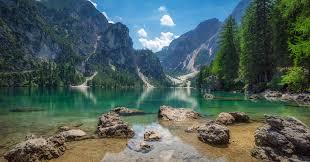 amazing nature photo