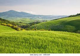 Hilly landscape Val d'Orcia, UNESCO World Heritage Site, with Monte Amiata  in