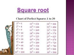 Perfect Squares Chart 1 25 Squares Square Roots Class 8th