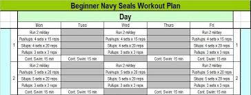Navy Seal Workout Regimen Sport1stfuture Org
