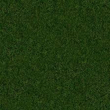 seamless dark grass texture. Textures Texture Seamless   Green Grass 13025 - NATURE ELEMENTS VEGETATION Dark S
