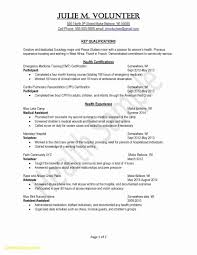 Resume For Teens Awesome Cv Resume Template Nz New Zealand Teen Resumes Templates For