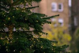 Cone Shaped Christmas Tree Net Lights Christmas Net Lights Trackidz Com