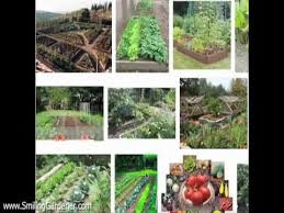 Small Picture Organic Vegetable Garden Design 2 Curvaceous Tips YouTube
