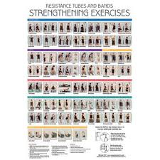 Resistance Tube Workout Chart Printable Resistance Band Exercise Chart Pdf
